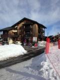 ski-service-374
