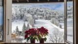 vue-du-chalet-fenetre-4770